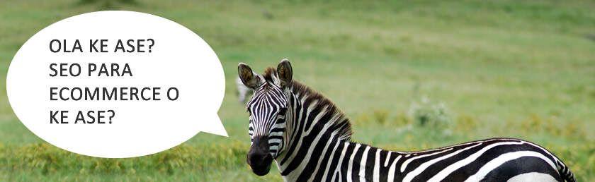 ¿Cómo preparar tu web para Google Zebra?