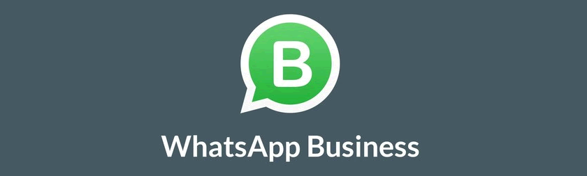 Whatsapp Business para ecommerce