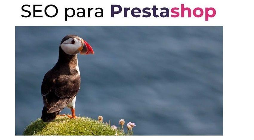 Ebook: SEO para Prestashop